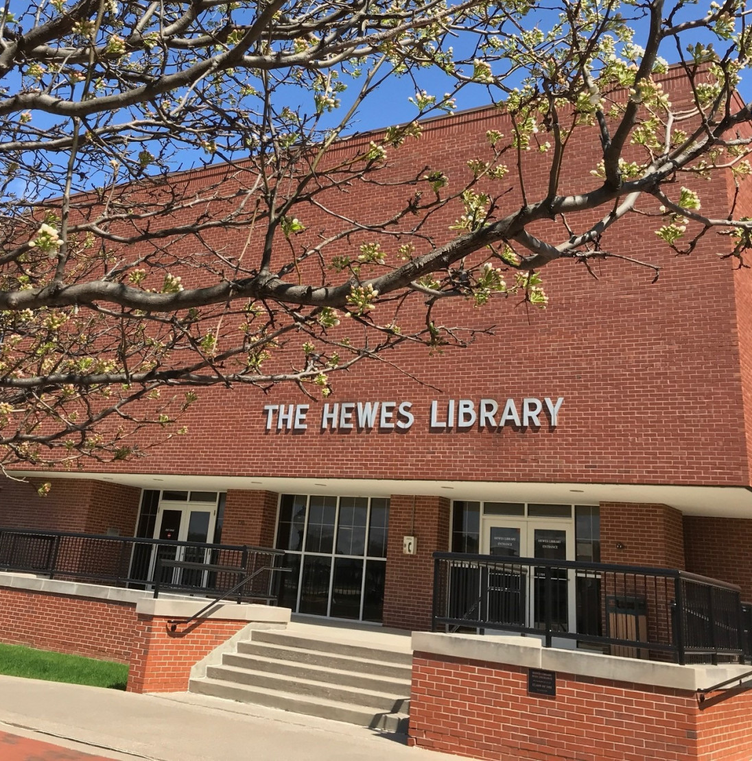 National Library Week spans April 19-25., which Hewes Library Director Sarah Henderson Henderson ...