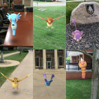 Various Pokémon have already been seen on campus during the Pokémon Go craze.