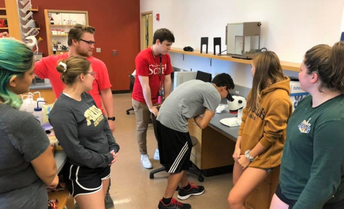 Summer research students sexing fruit flies.
