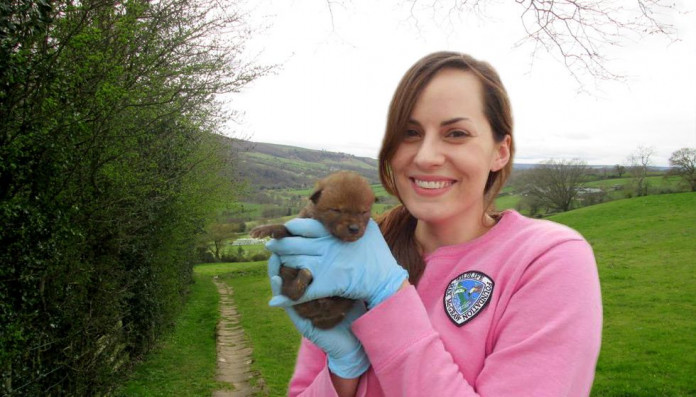 Sarah Nokes '09 worked in wildlife research and management after Monmouth, before going to ve...